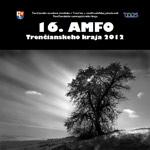 AMFO 2012